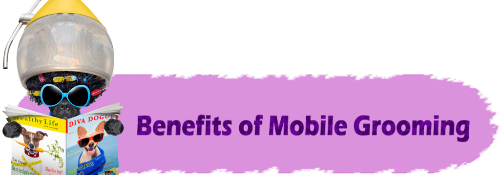 Benefits_Mobile